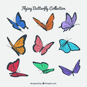 Confezione di farfalle colorate in volo