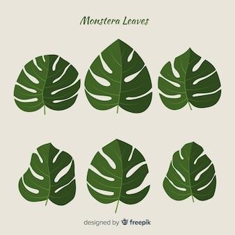 Confezione di foglie disegnate a mano
