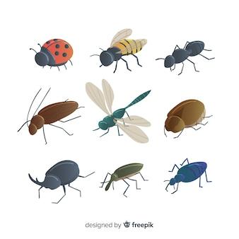 Confezione di insetti colorati disegnati a mano