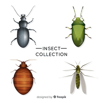 Confezione di insetti realistica