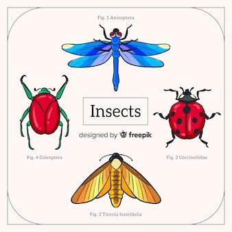 Confezione di insetto realistico disegnato a mano