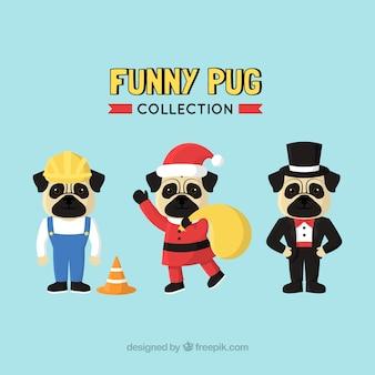 Confezione moderna di pugs vestiti