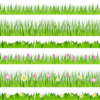 Confine di erba senza soluzione di continuità