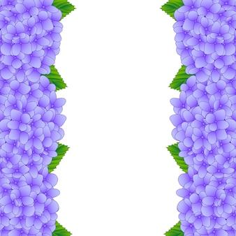 Confine di fiori di ortensia viola