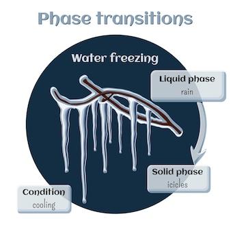 Congelamento dell'acqua - ghiaccioli sui rami degli alberi.