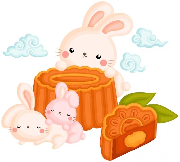 Coniglio carino e mooncake