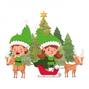 Coppia di elfi con albero di natale