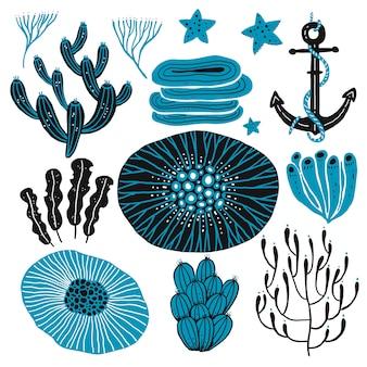 Corallo dell'oceano mare profondo.