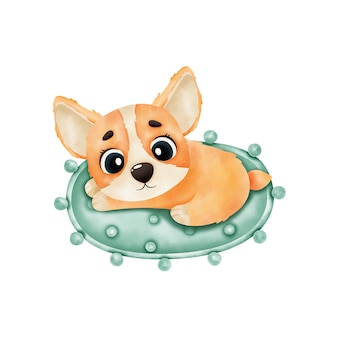 Corgi cucciolo acquerello si trova sul tappeto isolato su sfondo bianco. illustrazione dell'acquerello