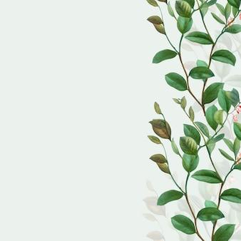 Cornice botanica verde