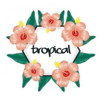 Cornice circolare con fiori e foglie tropicali
