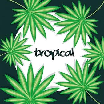 Cornice circolare con foglie tropicali