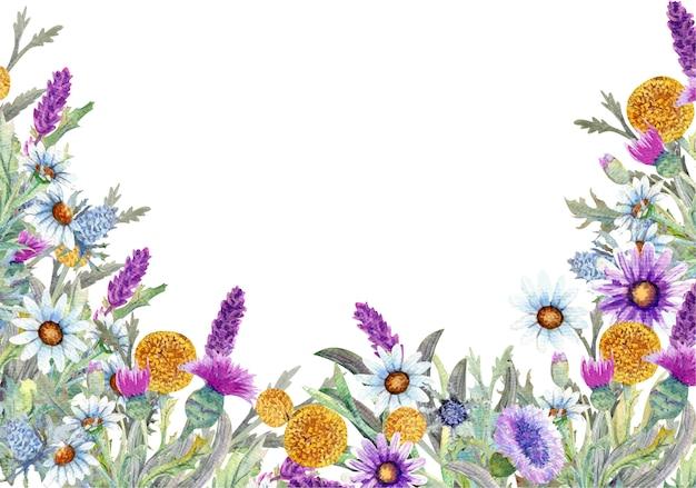 Cornice con fiori selvatici su sfondo bianco