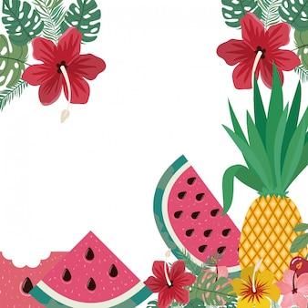 Cornice di deliziosi frutti tropicali