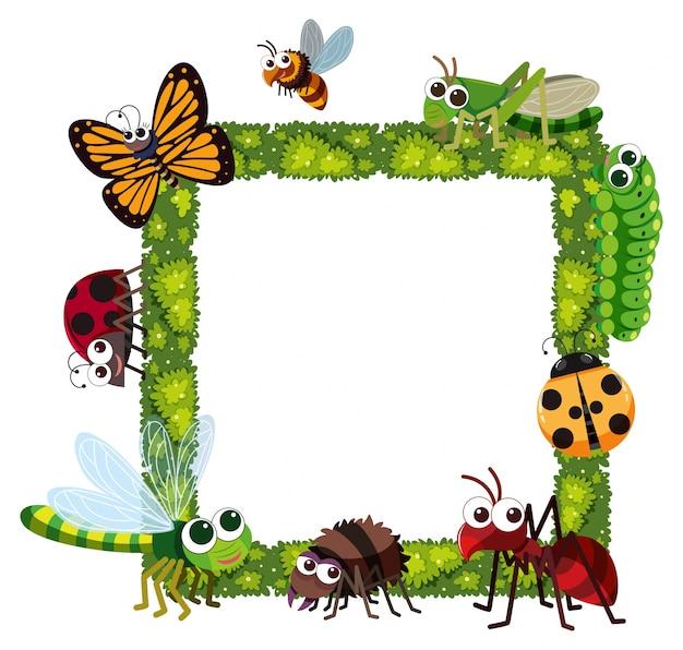 Cornice di erba con molti insetti