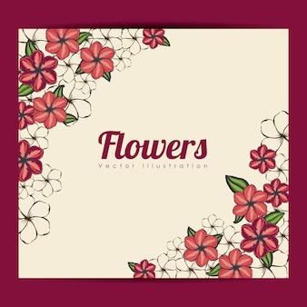 Cornice di fiori
