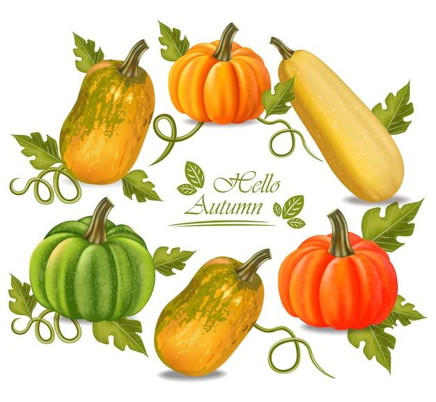 Cornice di zucche colorate d'autunno
