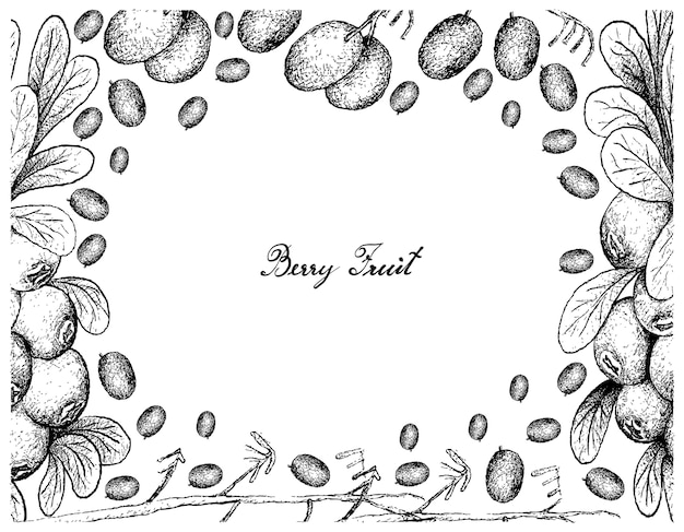 Cornice disegnata a mano di giglio di lino e mirtillo mirtillo