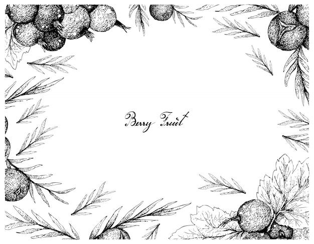 Cornice disegnata a mano di jostaberries maturi e bacche di ginepro