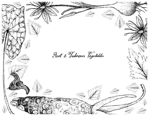 Cornice disegnata a mano di radice e verdure tuberose