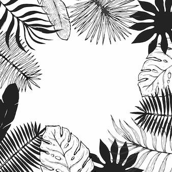 Cornice foglia di pianta tropicale. cornice floreale botanica