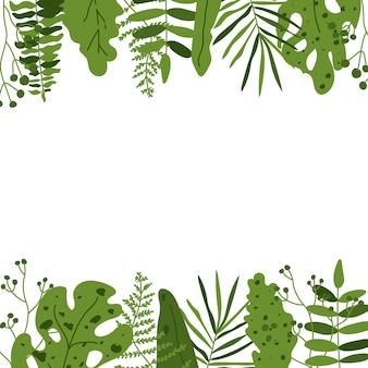 Cornice quadrata esotica foglia tropicale. fondo del modello con la palma delle foglie verdi isolata su bianco, monstera per la carta dell'invito di progettazione