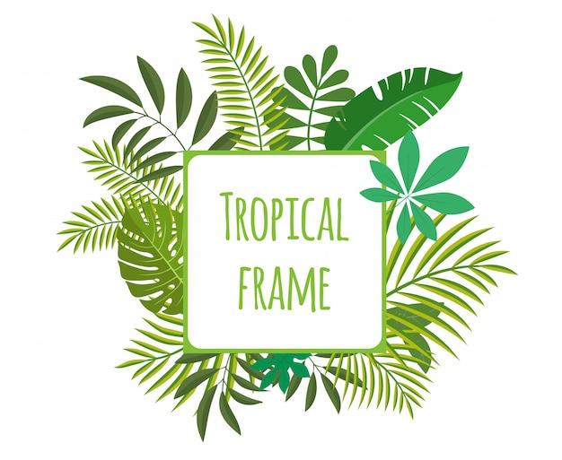 Cornice quadrata tropicale, modello con posto per il testo. illustrazione, isolato su sfondo bianco.