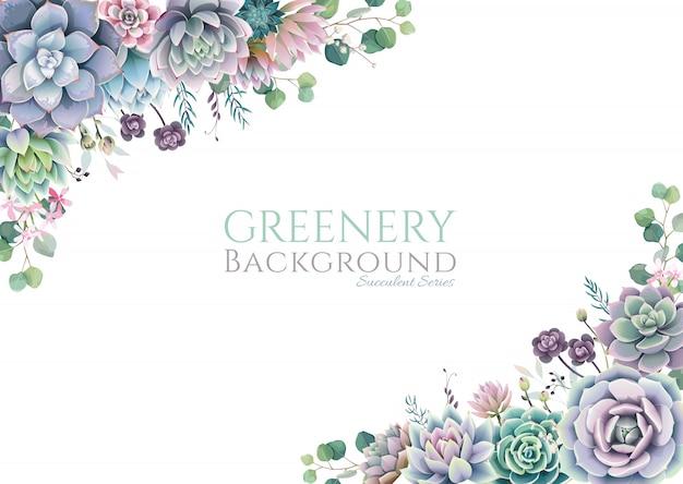 Cornice verde, succulenta e rami, bordo