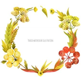 Corona di piante selvatiche di prato