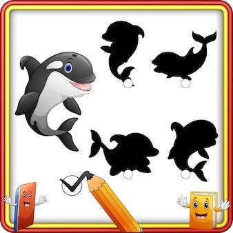 Corrispondenza dell'ombra del fumetto di orca selvatica