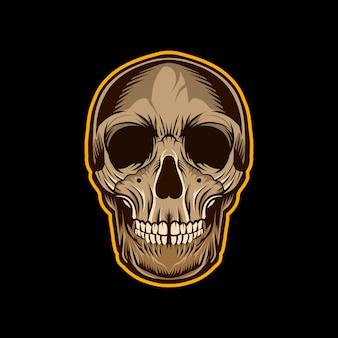 Cranio testa disegno colorato