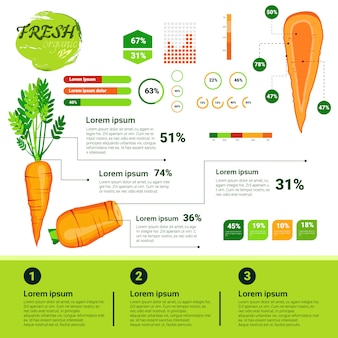 Crescita, agricoltura ed agricoltura naturali di vagetables di infographics organico fresco