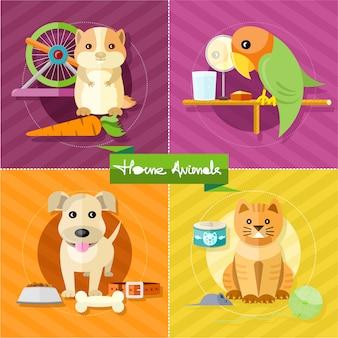 Criceto, pappagallo, gatto e cane
