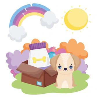 Cucciolo di cane con animali domestici del paesaggio dell'alimento della scatola