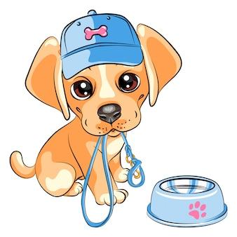 Cucciolo di cane labrador retriever
