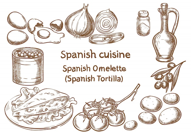 Cucina spagnola schizzo di vettore di ingredienti spagnolo omelette (tortilla).