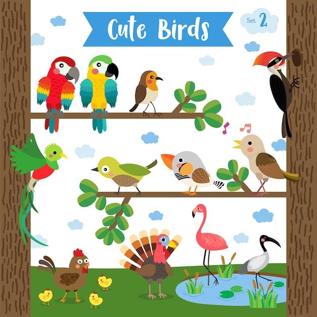 Cute bird animal cartoon