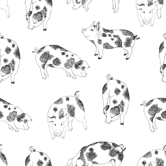 Cute little pigs background