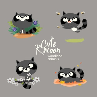 Cute racoon woodland animals