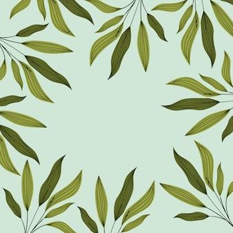 Decorazione a cornice naturale di foglie verdi
