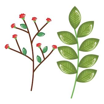 Decorazione di primavera di foglie di piante