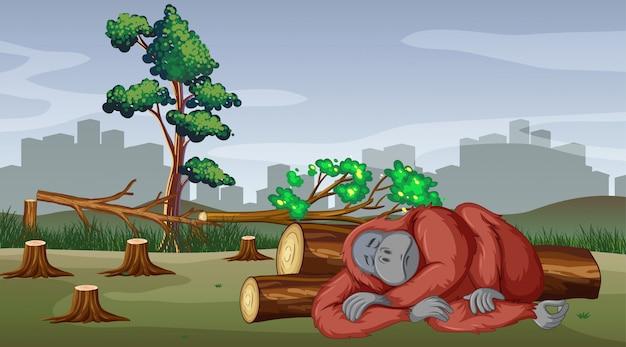 Deforestazione con gorilla che muore