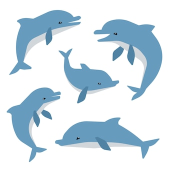 Delfini svegli in diverse pose vector illustation. delfini isolati su sfondo bianco