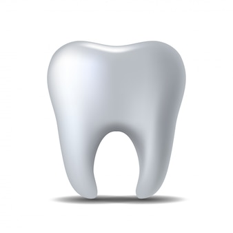 Dente bianco realistico isolato su sfondo bianco