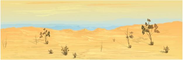 Deserto del texas sullo sfondo.