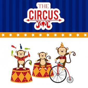 Design da circo