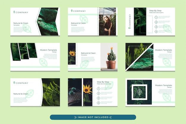 Design del modello di presentazione in verde pastello con uno stile moderno, semplice e professionale adatto per l'uso di presentazioni aziendali eco verdi, giardini botanici, campagne di conservazione delle foreste.