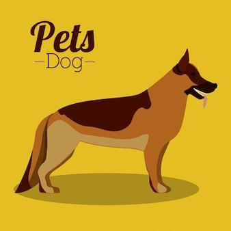 Design di animali domestici