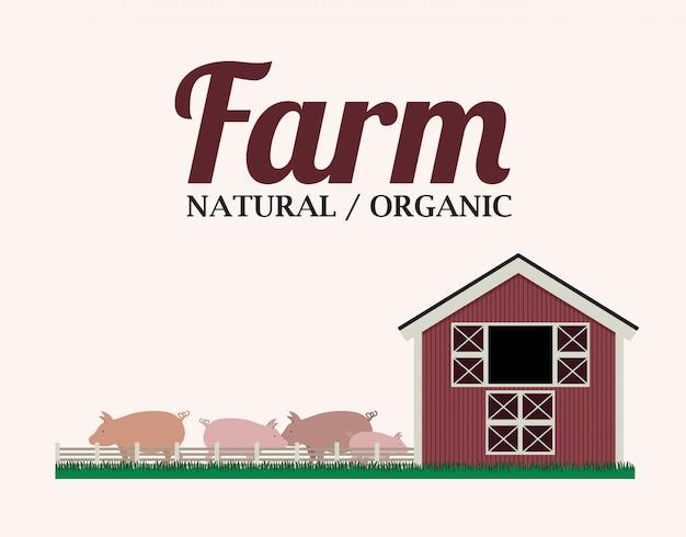 Design di fattoria