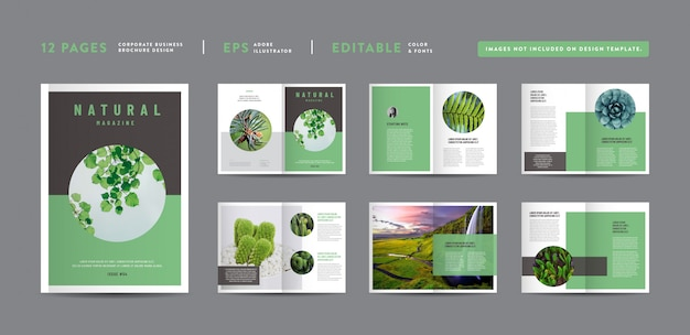 Design rivista natura | layout del lookbook editoriale portafoglio multiuso | design del libro fotografico